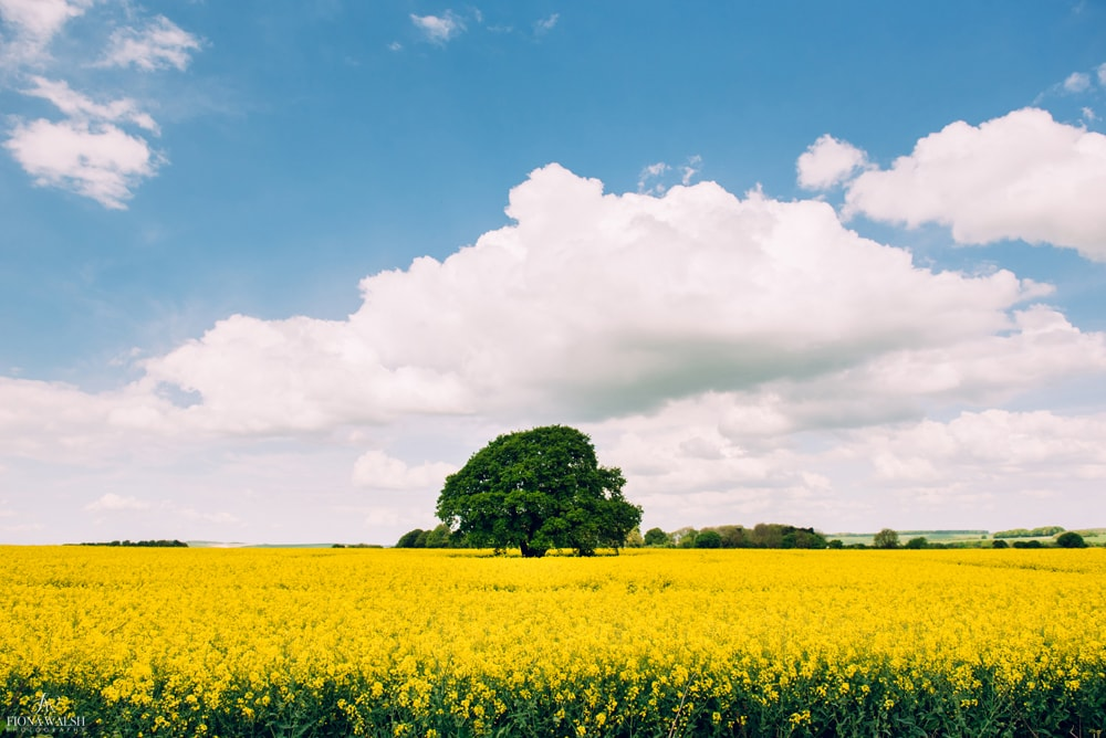 english-landscape-photos