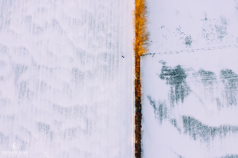 drone-photography